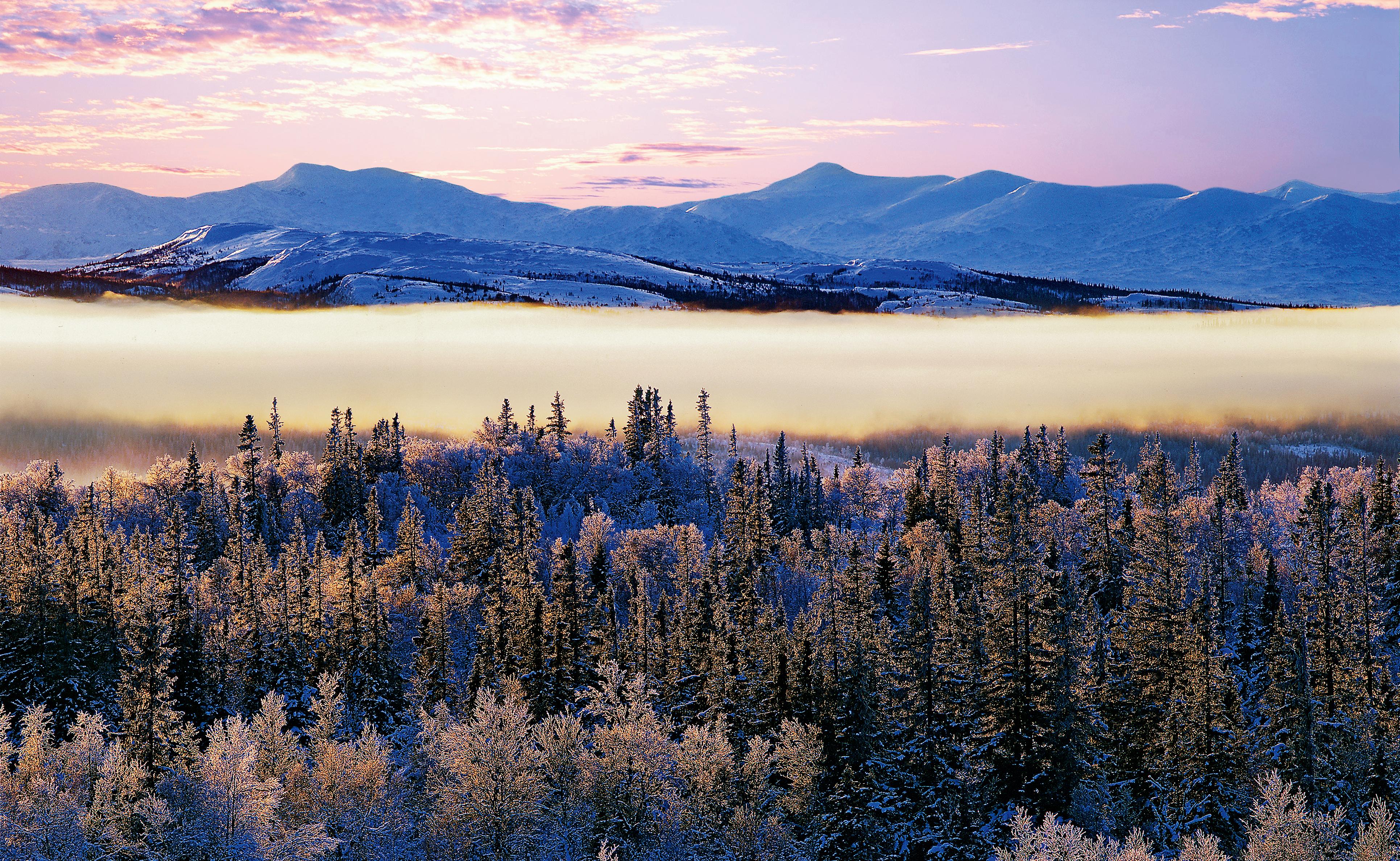 julkul_Januari-Åredalen-Jämtland